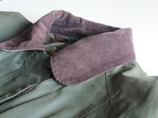 コーデュロイの衿の画像