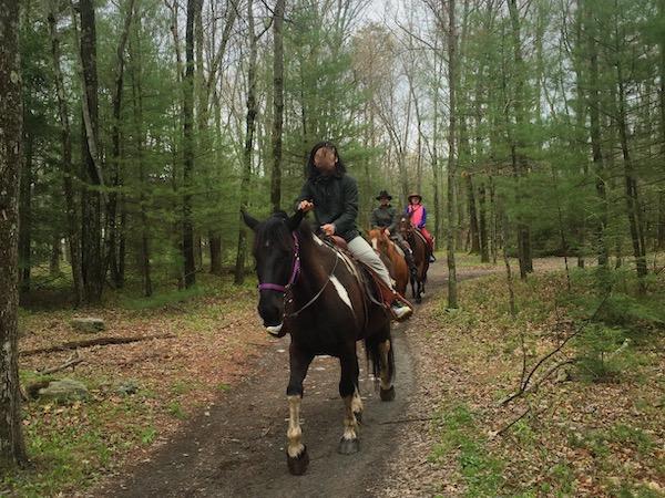 乗馬で着用している画像